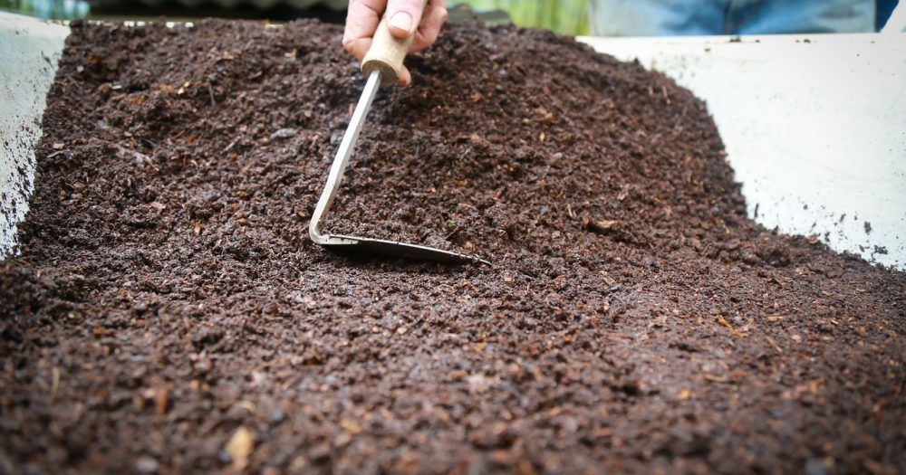 Worm Compost