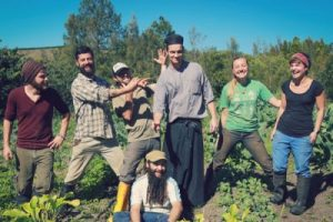 permaculture people at zaytuna farm