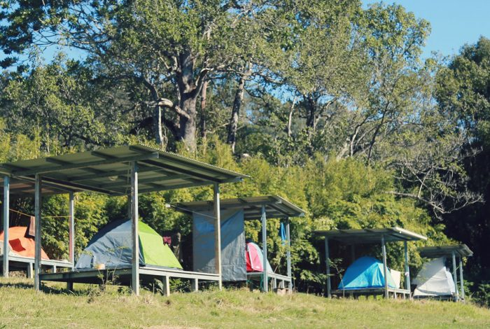 Zaytuna Farm Camping Platforms