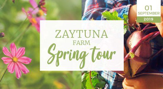 Zaytuna-farm-spring-tour--01-September-2019