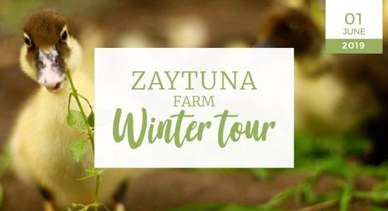 Zaytuna-farm-winter-tour-01-JUNE-2019