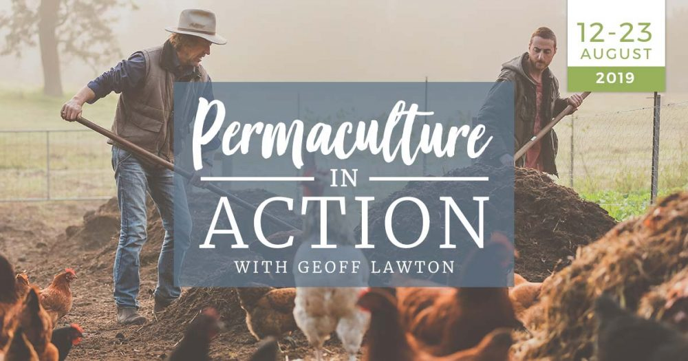 permaculture-in-action-practical-homesteading-off-the-grid-zero-waste-course-practical-training-12-23-august-2019-geoff-lawton