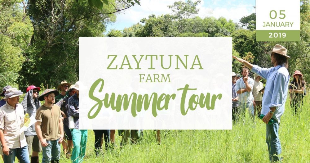 zaytuna-farm-summer-tour-05-jan-2019