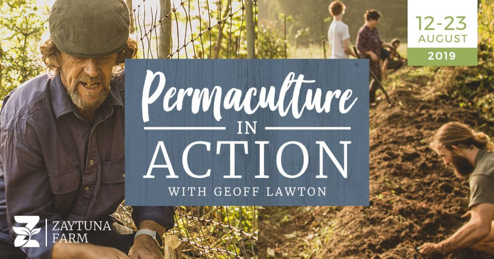 PIA-Zaytuna-farm-Permaculture-in-action-with-geoff-lawton